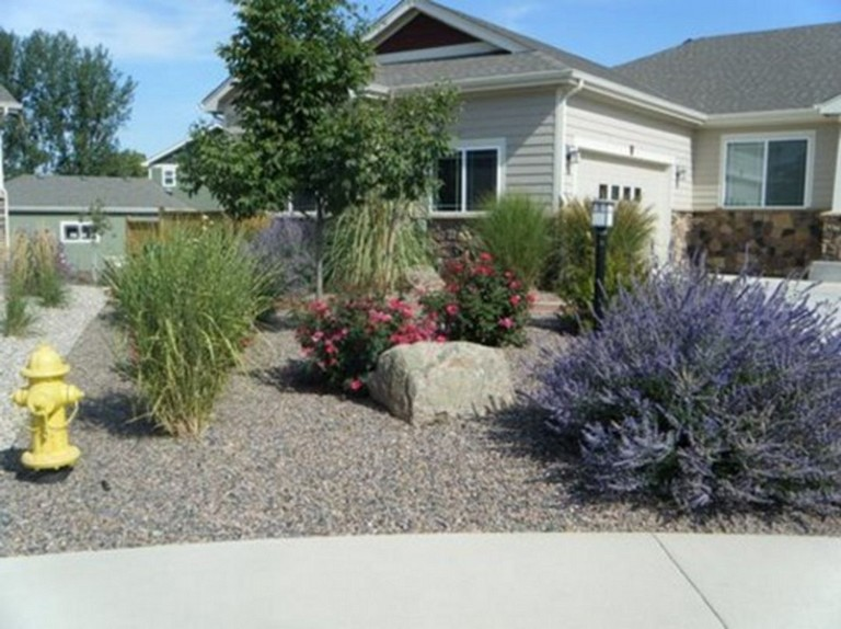 62 Top Xeriscape Landscaping Colorado Inspirations You Need To Know